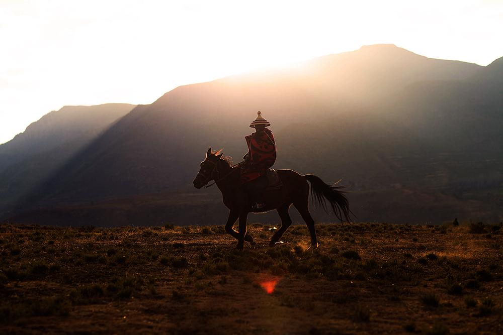Lesotho Horseman