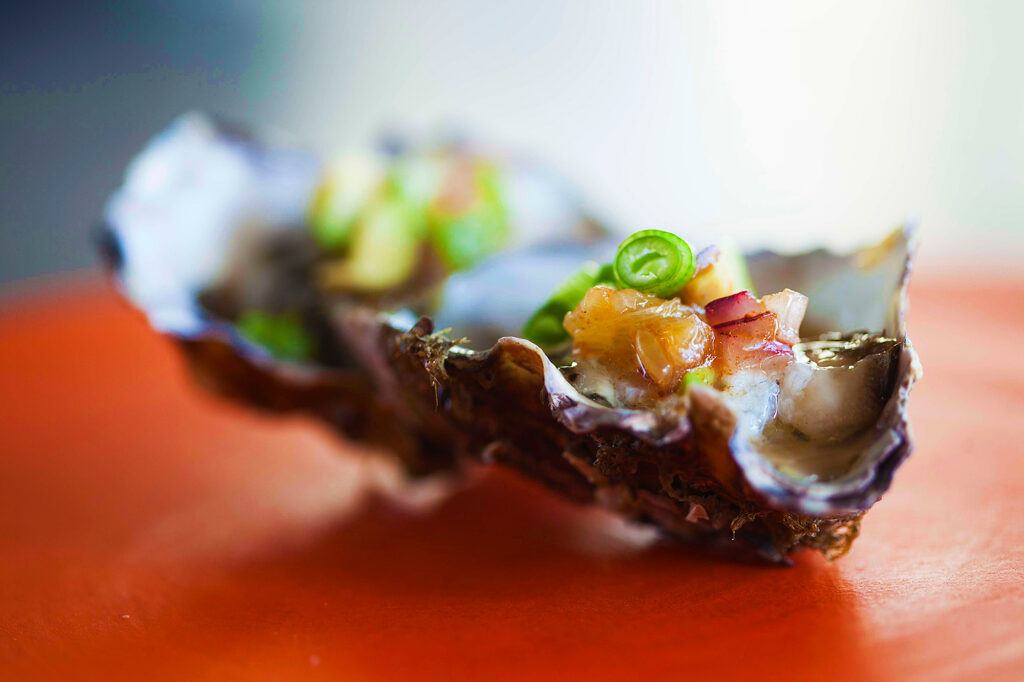 Duinhuis Silver Oyster